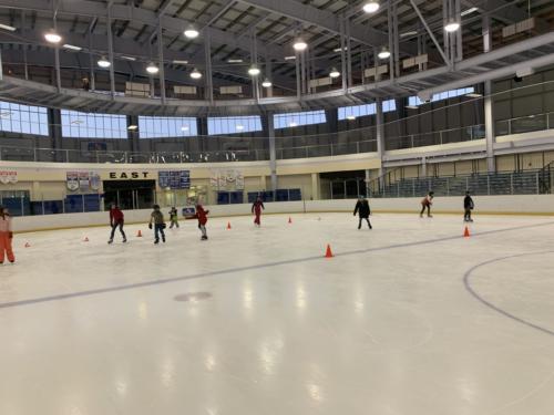 Skating 2019